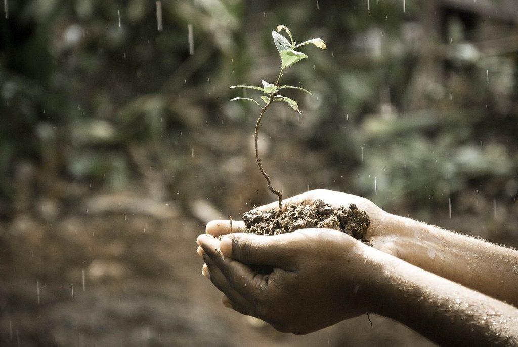 Q2「成長できる環境?」